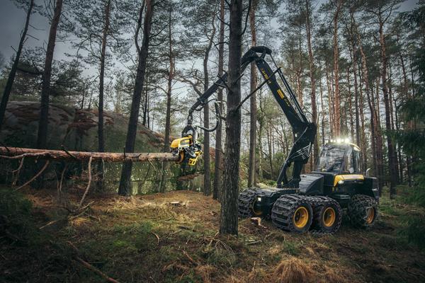 2019二手伐木机进口物流要哪些单证手续报关咨询